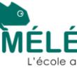 école caméléon